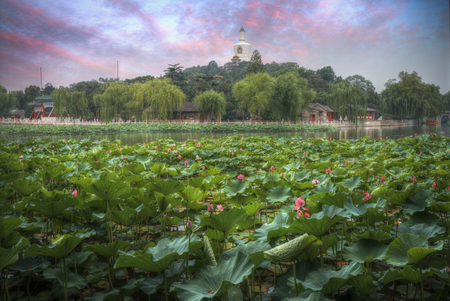 Beihai Park Is The Imperial Garden To The North-west Of The ...
