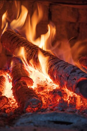 fire burns wood in the stove.