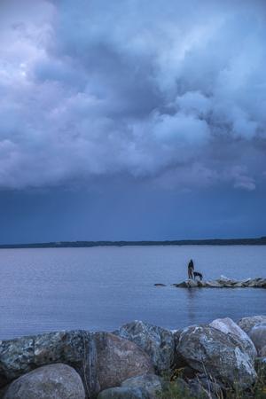 Sunset at the sea. Its raining
