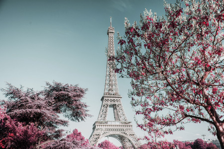 Beautiful view of famous Eiffel Tower in Paris, France Banque d'images