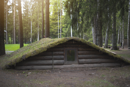 dugout in the forest. Environmentally friendly house