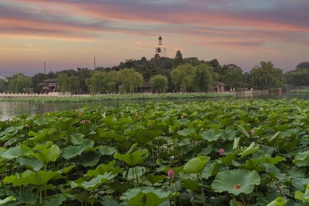 Beihai Park is an imperial garden to the north-west of the Forbidden City in Beijing.
