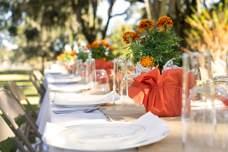 dinner table: Outdoor spring or summer casual garden party set up for lunch dinner with long table folding chairs marigold flowers plates and tablecloth Stock Photo