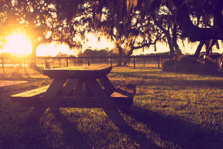 restful: Wooden picnic table in field with trees at sunset sunrise golden hour looking peaceful serene meditative warm relaxing restful