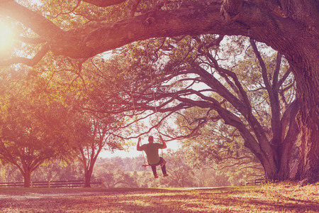 calmness: Man swinging from a large live oak tree branch in the countryside at a farm or ranch looking serene peaceful calm relaxing beautiful southern whimsical happy dreamy romantic with a retro vintage lens flare and light leak filter