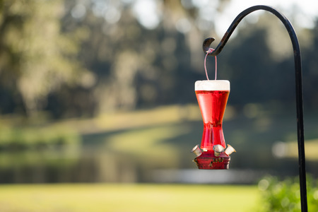 feeder: Hummingbird feeder without birds full of red nectar with bees on the bottom handing from a metal pole stand holder