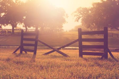 Pferd Querschiene springen Hindernis Hürde in einem Feld für die Praxis Ausbildung bei Sonnenuntergang Sonnenaufgang mit der Weinlese Retro im Alter Filter und Sonne Flare