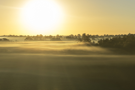 meditative: Aerial sunrise or sunset with fog or mist at the treetops in the rural countryside looking moody dramatic beautiful meditative relaxing tranquil peaceful