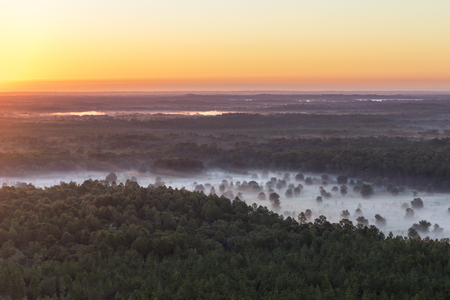 Aerial landscape at sunrise sunset of natural wild forest woods trees and fog myst in the countryside looking atmospheric romantic rural untouched