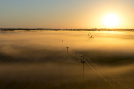 eletrical: Telephone poles on a foggy misty morning at sunrise or sunset on a rural countryside farm