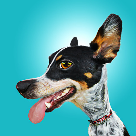 Panting happy fun exaggerated Australian Cattle dog or mix breed canine portrait caricature with big eyes ears and nose Imagens
