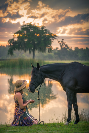 Young woman girl kneeling down in front of black Arabian horse at sunset sunrise in country rural farm setting offering friendship trust devotion love