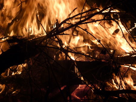 night stick: Summer Night Bonfire Stock Photo