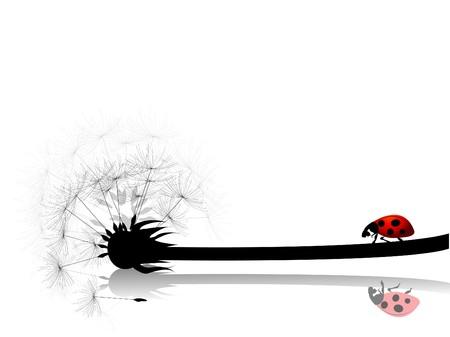 ladybugs:  dandelion card with ladybug