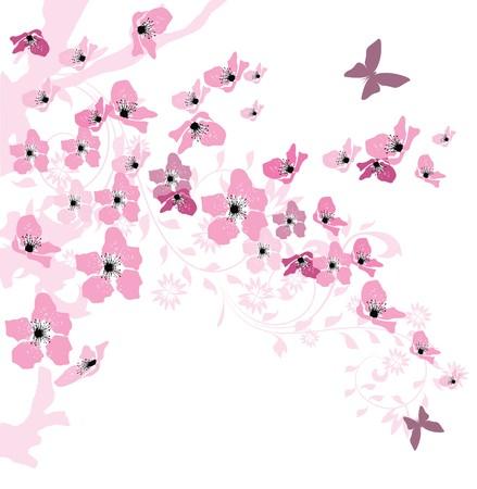 flor de durazno: Fondo de primavera elegante decorado con flores de cerezo