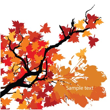 Autumn background with space for text.  Vector