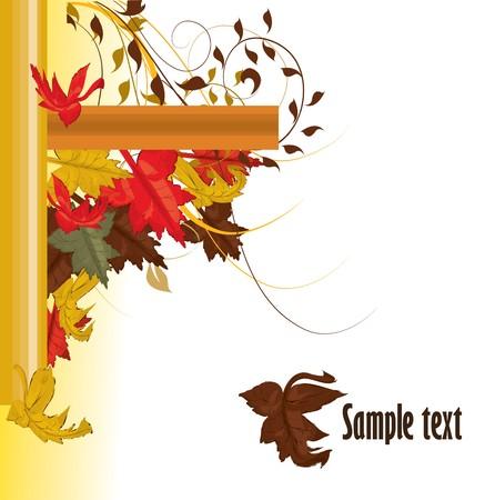 sycamore leaf: autumn background Illustration