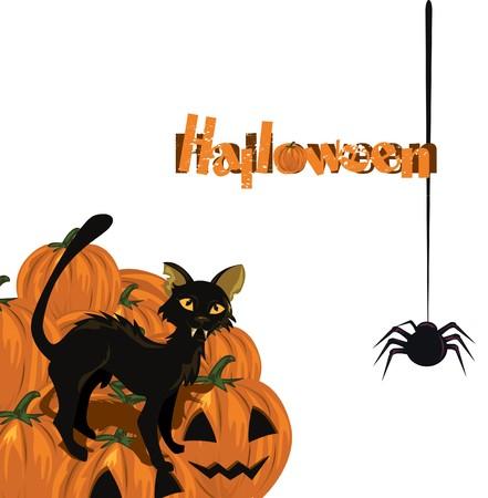 trickster: Halloween card with kitten and pumpkin  Illustration