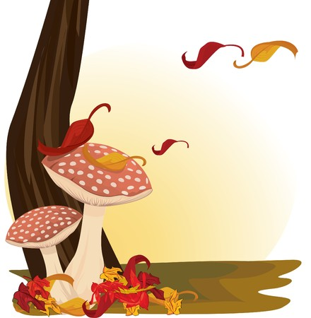 fairy toadstool: Red Mushrooms