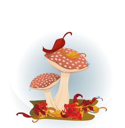 Red Mushrooms  Vector