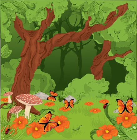 canopy: Forest background