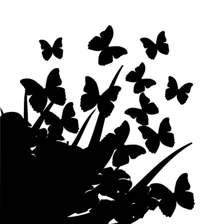Illustration with silhouettes of butterflies, flowers and grass  Vector