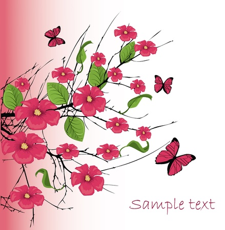 vector cherry blossom with butterfly Vector