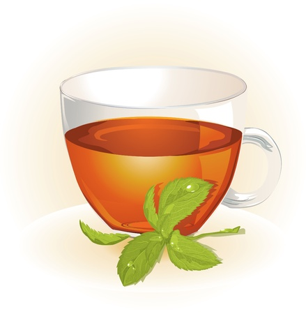 Glass cup of tea with mint  Vector