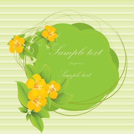 Tropical flower card Stock Vector - 10718676