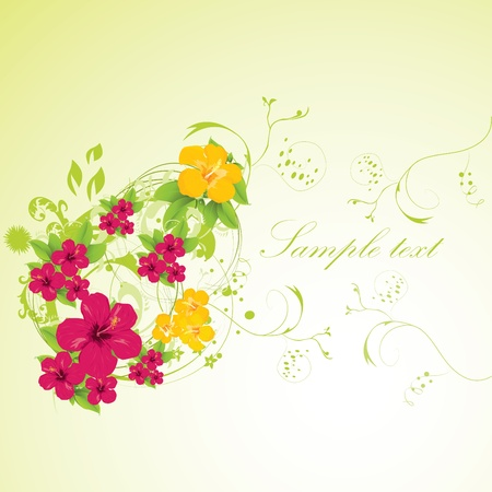 background with blooming hibiscus Stock Vector - 10722547