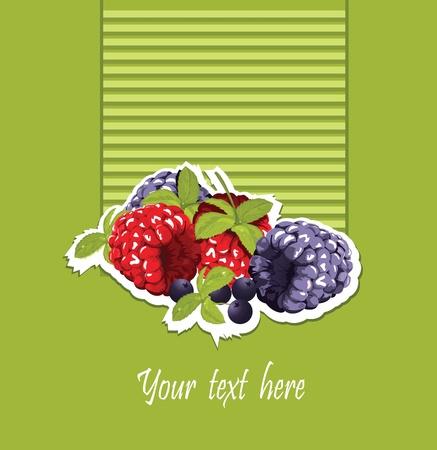 raspberry and blackberry card Vector