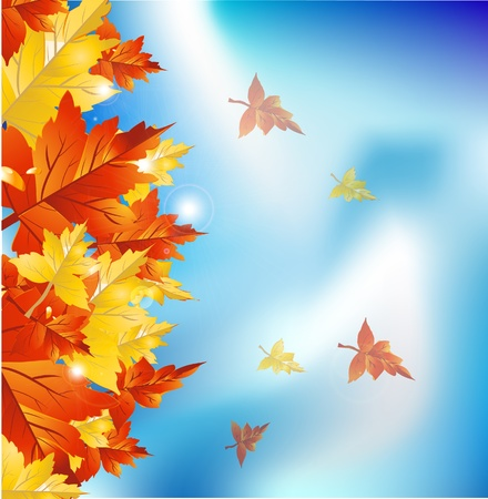Autumn leaves border  Vector