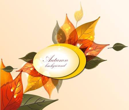 Autumn leaves Stock Vector - 10722541