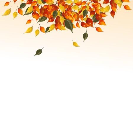 Achtergrond van de herfst bladeren.