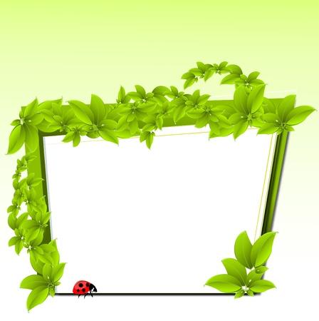 leaf water drop: vector eco design  Illustration