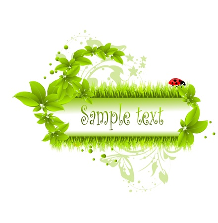 vector illustration of green leafs and grass