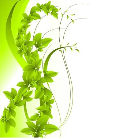 příroda: Zelené pozadí