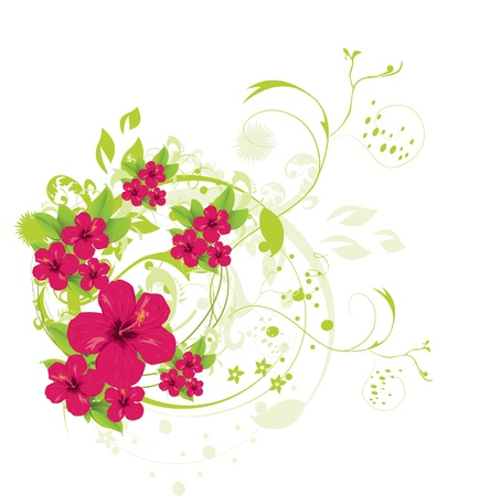 Hibiscus  Stock Vector - 10722535