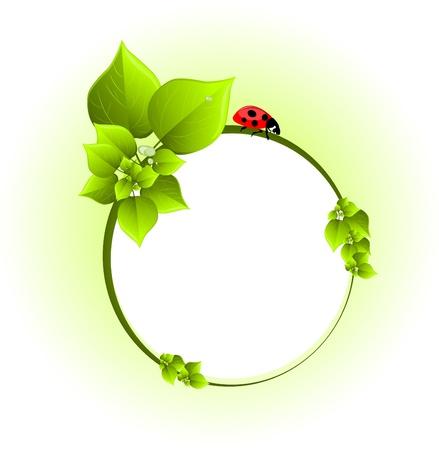 botany woman: Green background Illustration