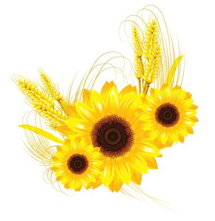 zonnebloemen en tarwe achtergrond