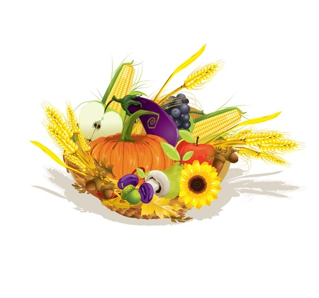rich harvest of vegetables and fruits, vector illustration  Vector
