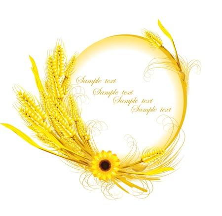 sunflower with wheat decoration  Illustration