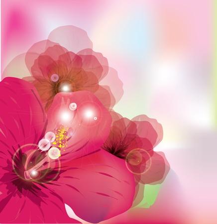 fantasize: Flores de fondo rom�ntico