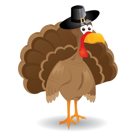 turkey thanksgiving: Vector de Acci�n de Gracias Turqu�a Vectores