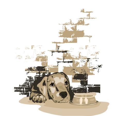 Hondje te wachten op eten Stock Illustratie
