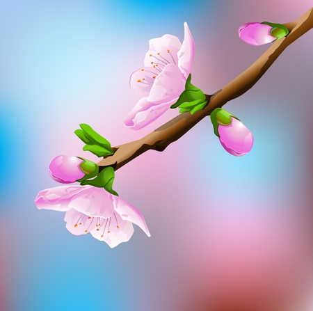Blossoming Cherry Tree Vector