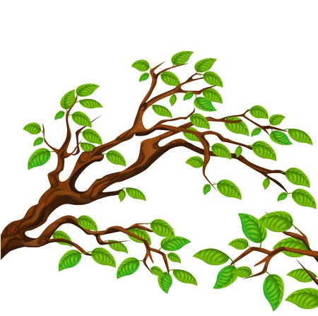 Branch with green tree Stock Vector - 15253551