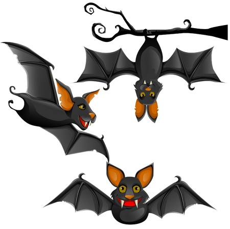 cute bat illustration Vector