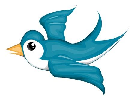 bluebird: Blue bird