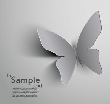 paper cut out: Paper cut  out butterfly Illustration